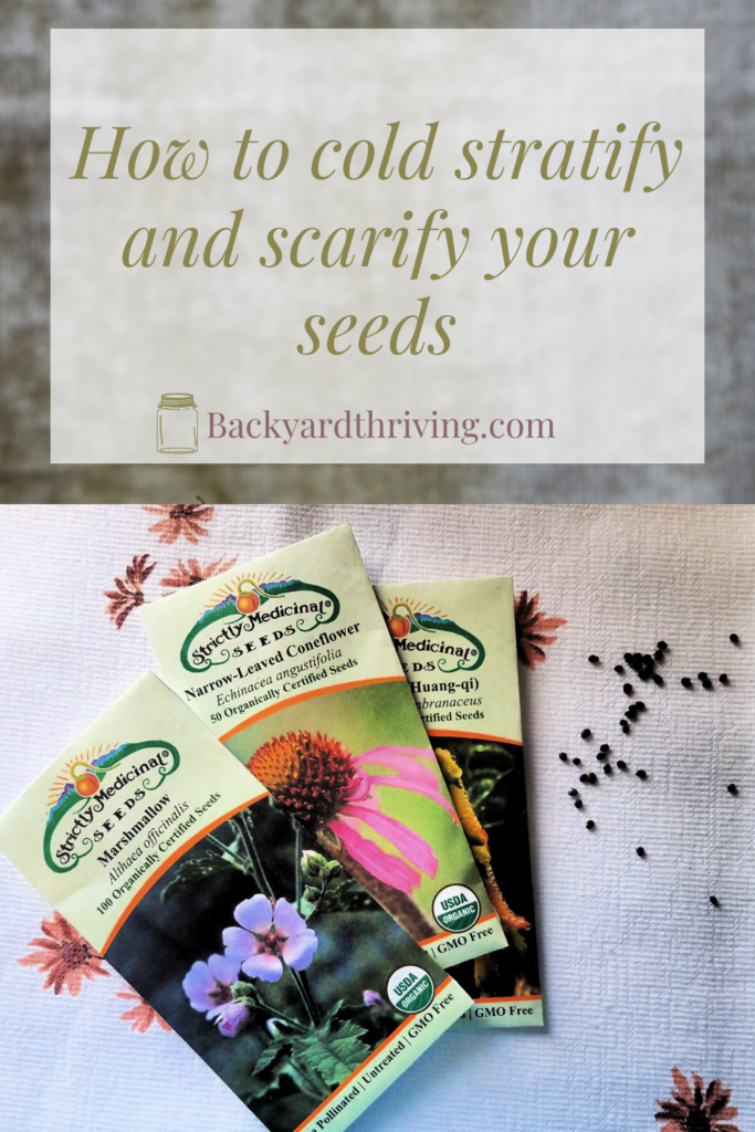 How to Cold Stratify and scarify your seeds #gardening #seeds #gardeingseeds #coldseedstratification #coldstratify #seedstratification #seedscarify #gardenprep #seedprep