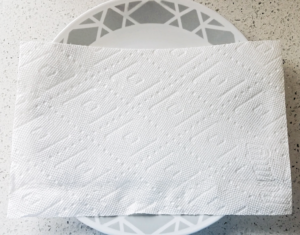 paper towel on plate