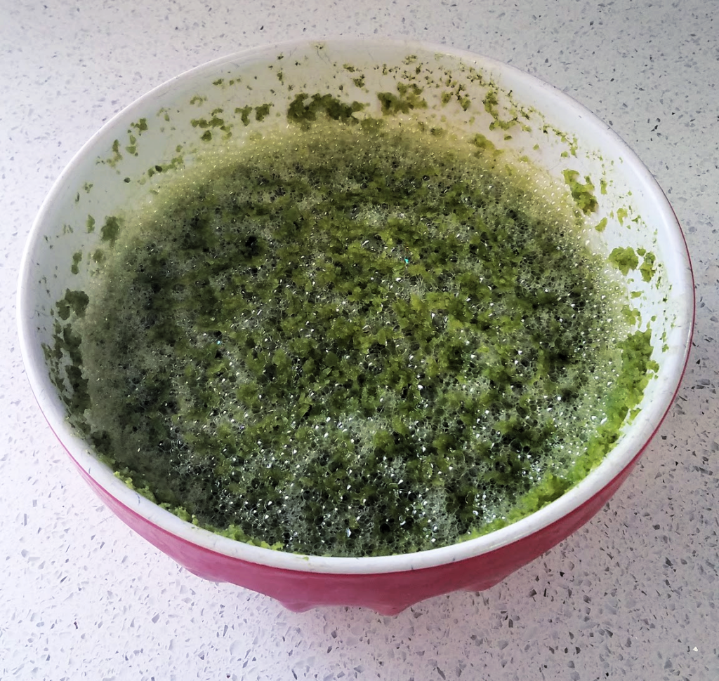 bowl of green pepper puree post refrigeration